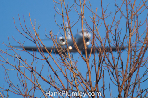 Through the Trees on Flickr.A private jet on approach to Cleveland Hopkins International Airport, viewed through the winter trees, February 6 2012.