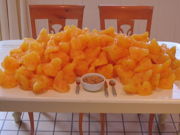 l1kethew1nd:  dreambigliveskinny:  Ever wonder what 100 pounds of fat looks like? Well there it is :p  Nothing ruins my urge to binge as much as a picture of pure fat  EWWWW!!!