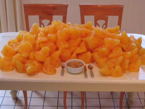 ordinarystephanie:  dreambigliveskinny:  Ever wonder what 100 pounds of fat looks like? Well there it is :p  Nothing ruins my urge to binge as much as a picture of pure fat  I can't believe I've lost THIS. Plus the weight of a small child. Mind-numbing.