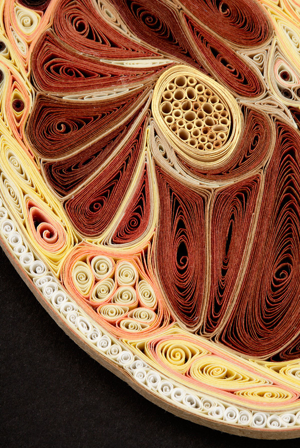 geneticist:  Artist Lisa Nilsson constructed various cross sections of the human body using only pieces of rolled paper. Click to zoom in on each picture and be amazed.