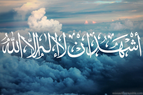 islamic-quotes:  There is no God except Allah.