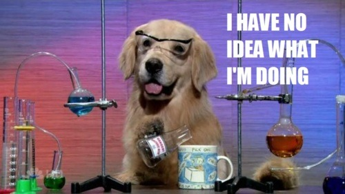 Nor do I, Science Dog.  Nor do I.