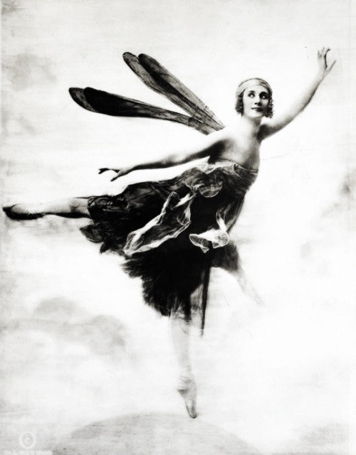 Anna Pavlova in Dragon Fly, photographs by Ira L. Hill Studio (1914)