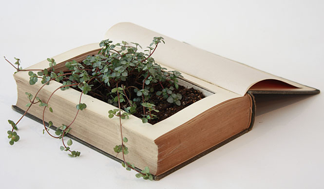 Eco-Pots Made From Recycled Books | IGreenSpot