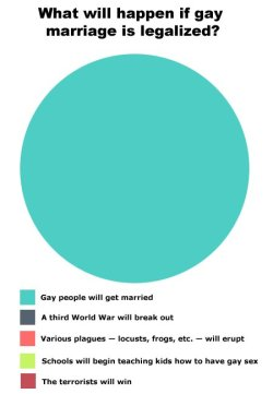 The Only Gay Marriage Graph That Really Matters (via Prose Before Hos)