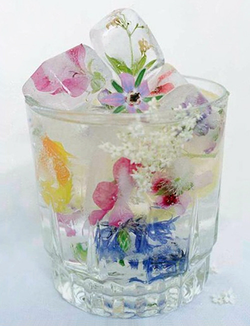 Floral Ice Cubes by Martha Stewart Living…  To suspend flowers in the cubes, work in layers: Fill an ice tray  (one that makes large cubes so the ice will last longer) a quarter of  the way with water, add flowers facing down, and freeze. Add more water  to fill halfway, and freeze. Fill to the top, and freeze again.  For  ice that's especially clear, use distilled water that has been boiled  and then cooled. This limits impurities and air bubbles, which make ice  cloudy.  Use only edible flowers, such as orchids, nasturtiums,  pansies, and snapdragons, that have been grown to be eaten (to ensure  they haven't been treated with chemicals). (via)