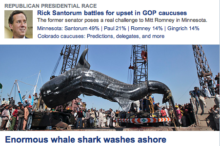 thepandabaker:  My favorite Santorum news yet.  That whale shark poses a real challenge. #SharkSnark