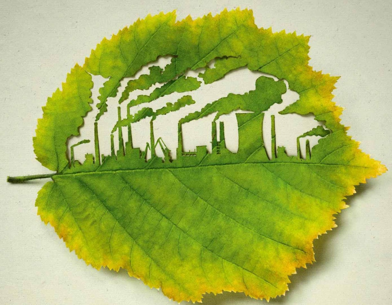 Leaf carving for the environment by Lorenzo Duran