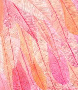 captainteapot:  Cropped flamingo feathers