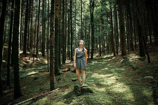 Girl of Forests on Flickr.