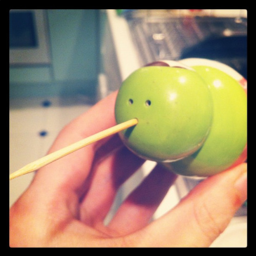 Made a Kiwi bird with a salt shaker and tooth pick.