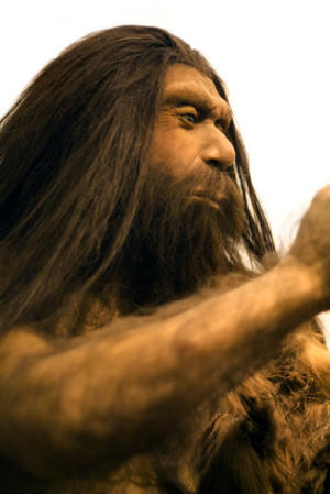 "deconversionmovement:  Neanderthal Demise Due to Many Influences, Including Cultural Changes ScienceDaily (Feb. 7, 2012) — As an ice age  crept upon them thousands of years ago, Neanderthals and modern human  ancestors expanded their territory ranges across Asia and Europe to  adapt to the changing environment. In the process, they encountered each  other. Although many anthropologists believe that modern humans ancestors  ""wiped out"" Neanderthals, it's more likely that Neanderthals were  integrated into the human gene pool thousands of years ago during the  Upper Pleistocene era as cultural and climatic forces brought the two  groups together, said Arizona State University Professor C. Michael  Barton of the Center for Social Dynamics and Complexity and School of  Human Evolution and Social Change. Read More  Quite interesting. Fun fact for subscribers: unless all of your ancestors are from Africa, you probably have Neanderthal ancestors."