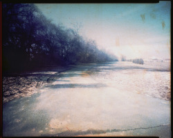 Nature Path - 8x10 pinhole ©Rebecca Adair 2012