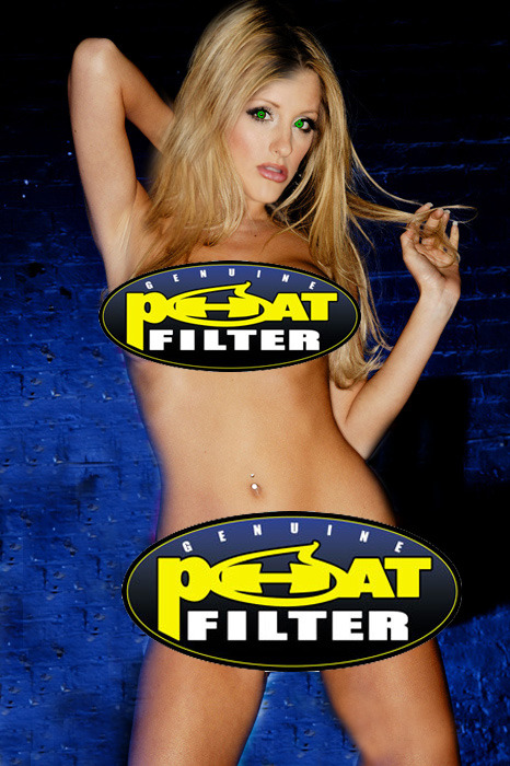 Phat Filter - Preferred 3 to 1 By Literate Growers  Recommended By 4 Out Of 5 Dentists Who Use Them