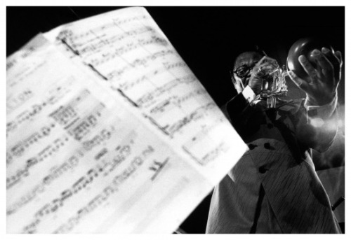 bamthephotographs:  Clark Terry photo by Roberto Polillo