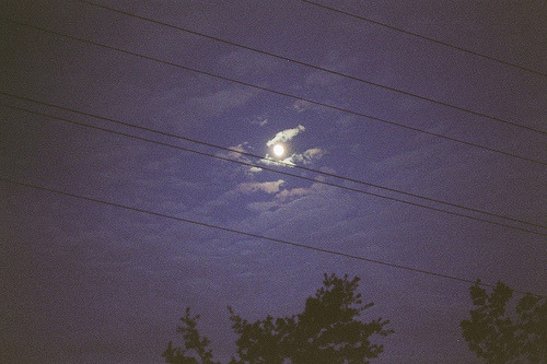 scaena:  moonlight. (by Petrana Sekula)