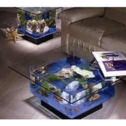 Coffee table aquarium - for that awkward moment when your having sushi on top of your fish. It's on Amazon for $622.99