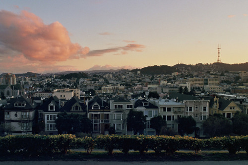 brandondoran:  Alta Vista Pacific Heights, San Francisco Nikon F3 HP Kodak Ektar 100