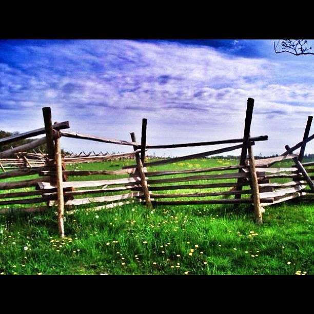 I took this picture in 8th grade. Completely forgot about it. #gettysburg #ramparts #grass #colors #civilwar (Taken with Instagram at Gettysburg, PA)
