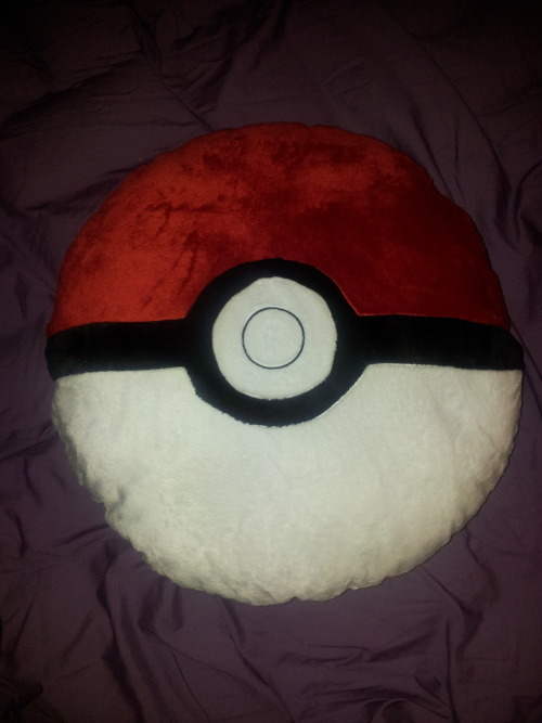 My new awesome pillow!!!!!