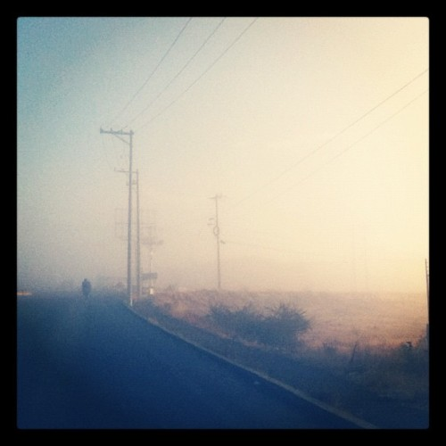 A foggy morning (Taken with instagram)
