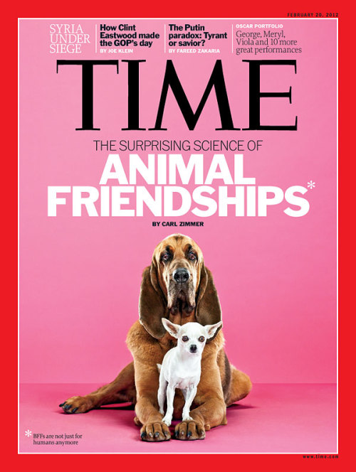 "timemagazine:  Next week's issue of TIME, featuring ""The Surprising Science of Animal Friendships,"" hits newsstands Friday.   obviously i shall consider this required reading for myself and all those involved."
