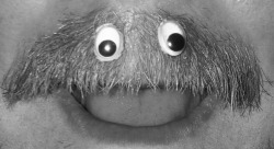 if the muppets ever had a moustache he would look like this