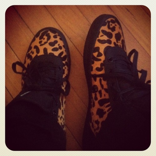 My kicks for the day!!#staygolden #dope #famousiinkhoe  (Taken with instagram)