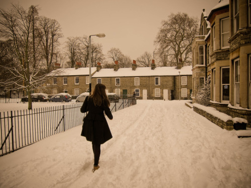 Snow. Cambridge.