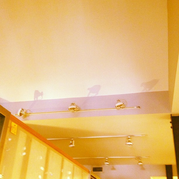 Safari animals or office light shadows? #seeingthings  (Taken with Instagram at Translation LLC)