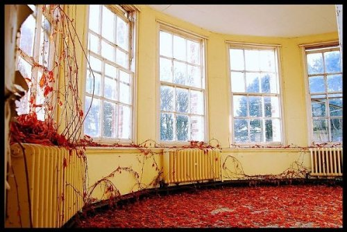 Abandoned insane asylums for your enjoyment: Bucketlisted.