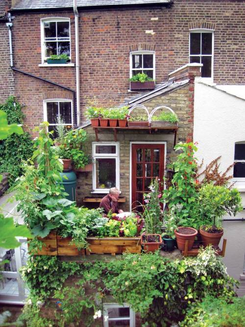 permatech:  Click through for an interesting article on small space gardening. via mockgardens