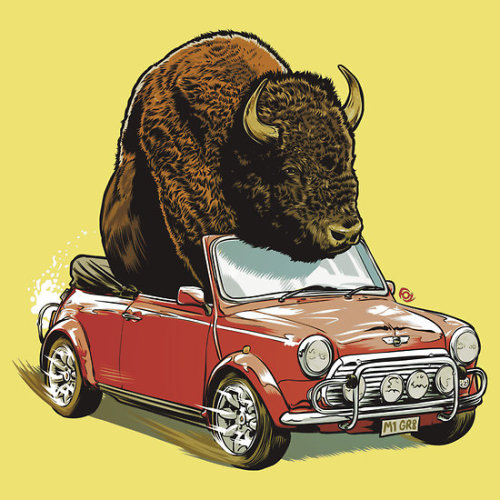 """Bison in a Mini."" by MrFoz.  Available as a t-shirt, hoodie or sticker."