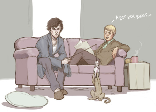 Sherlock. A cat. John. A whole lot of not doing it right.