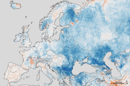 scipsy:  Cold Snap Across Europe. It's snowing again.