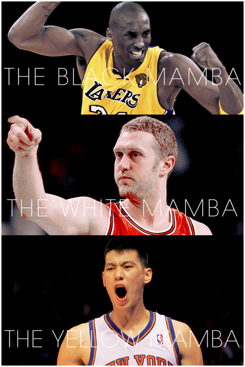 andyfongsta3:  radioactiveloser:  Kobe. Brian. Jeremy. Mamba Overload.  man tonight will be the real deal. I hope to God Lin pulls through tonight.