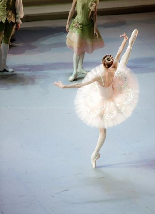 Svetlana Zakharova with the Mikhailovsky Ballet in The Sleeping Beauty (c) Nikolay Krusser
