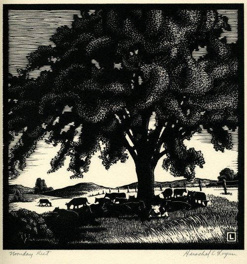 "yama-bato:   Noonday Rest  A black ink on rag paper woodcut showing cows grazing and resting under a tree. The artist described this as a ""composite scene of a typical Kansas vista."" Noonday Rest was drawn by Herschel C. Logan, who was born April 19, 1901 in Magnolia, Missouri and shortly after his birth the family moved to Winfield, Kansas. He attended the Chicago Academy of Fine Arts for one year. Logan was a commercial and advertising artist in Salina, Kansas, until his retirement in 1968. He was a member of the Prairie Print Makers. After retirement, Logan moved to Santa Ana, California. Creator: Herschel C. Logan Date: 1938"