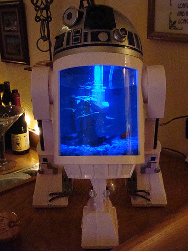 An R2D2 aquarium, that is also motion sensored to turn its head and beep. (by John Petrick)
