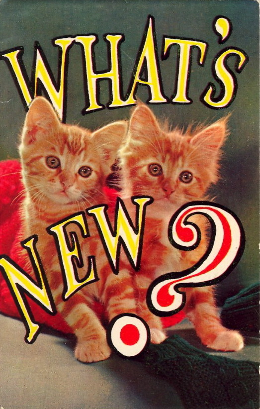 WHAT'S NEW PUSSYCATS? Whoa-Whoa-Whoa-Oh