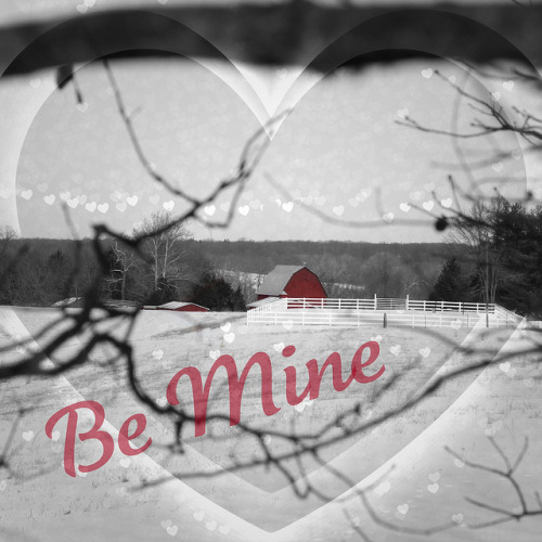 Be Mine on Flickr.Be Mine
