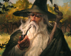 naturaobscura:  Gandalf the Grey by ~LucasGraciano