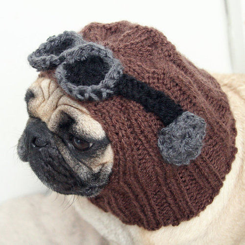 boodapug:  Dog Hat Aviator Hat with Goggles by jessicalynnart on Etsy.
