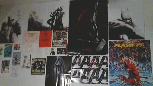 iwantmyburd:  my wall is so pretty sob