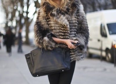 mystylephile:  Furry goodness, and Hermes!