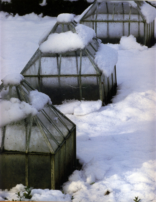 Must make these greenhouses from scrap stained glass