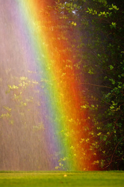 Sprinkler Rainbow at Old Key West by hz536n/George Thomas on Flickr.