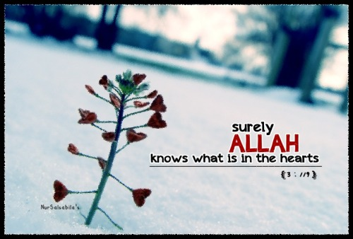 """surely Allah knows what is in the hearts."""