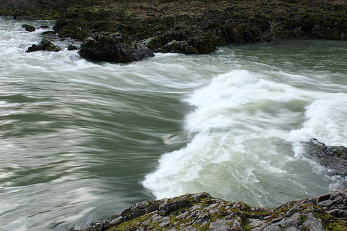 sedahs:  North Umpqua River 182 (by OregonBob)