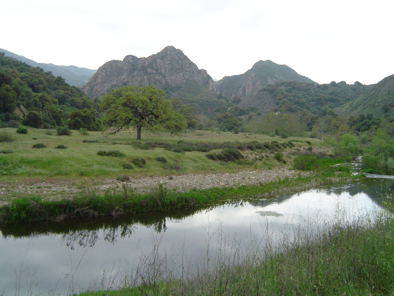124daisies:  Malibu Creek State Park, California.  The land was formerly owned by Bob Hope, Paramount Pictures and 20th Century Fox, and was featured in many movies and TV series filmed there.  The Goat Buttes, seen here, were seen in the background of both the move and TV series of M*A*S*H.